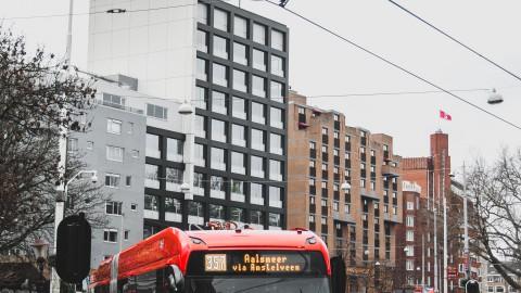 Mag je je hond meenemen met het openbaar vervoer in Haarlem?