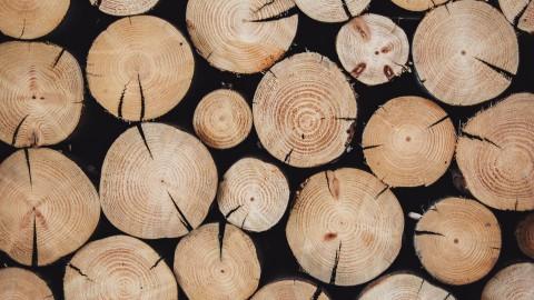 Oud hout hergebruiken